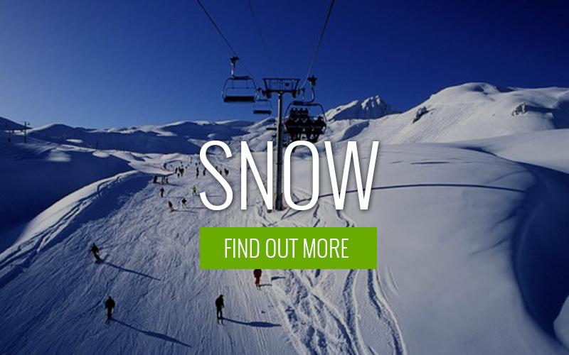 gomammoth_snow
